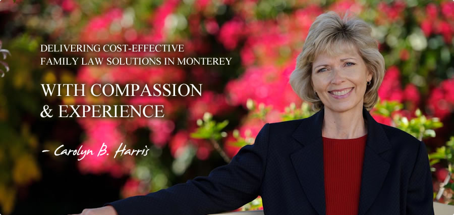 Family Law Solutions in Monterey, CA